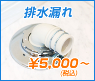 排水管漏れ ¥5,000(税込)~
